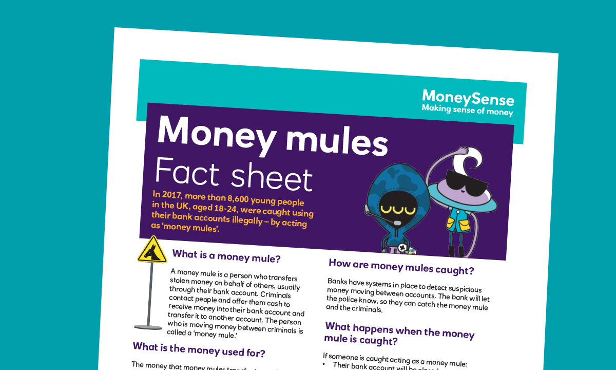 Fact sheet for Money mules